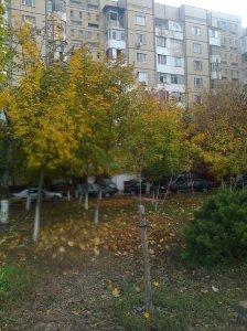 Toamna în Chişinău.