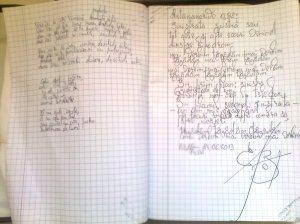 Antananarivo0,82: Sinistrata sinistră; poeziile mele; personale; poem; fotografiile mele; București; publicat de Bot Eugen, 24.06.2013; 14:00- 15:20; 15:30