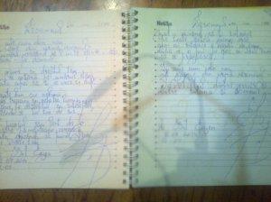 Nesomnul; poem; poeziile mele; personale; fotografiile mele; Chișinău; 12.07.2014; 02-05; 05:46; publicat de Bot Eugen.