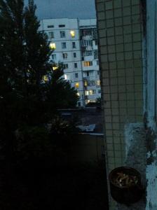 Nesomnul; fotografiile mele; diverse; personale; publicat de Bot Eugen. Chișinău; 11.07.2014; 22:20