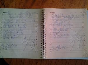 Arme și nopți albe (II); strălucind rece sub soare; poem; poeziile mele; personale; fotografiile mele; 12.07.2014; 05-06; publicat de Bot Eugen. 07:04