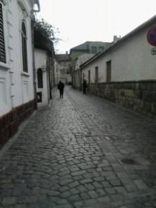Ema; fotografiile mele; Cluj-Napoca; 18.02.2013; 1992-2002; personale; publicat de Bot Eugen. 17.08.2014; București; șoseaua Pantelimon 302; sector 2; 13:03