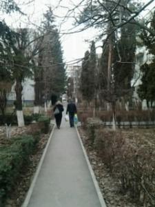 Fratele meu Mănăștur; fotografiile mele; personale; Cluj-Napoca; Mănăștur; 18.02.2013; publicat de Bot Eugen. București; șoseaua Pantelimon 302; 19.08.2014; 03:12
