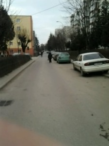 Fratele meu Mănăștur; fotografiile mele; personale; Cluj-Napoca; Mănăștur; 18.02.2013; publicat de Bot Eugen. București; șoseaua Pantelimon 302; 19.08.2014; 03:05