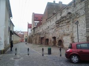Ema; cetatea veche; Cluj-Napoca; fotografiile mele; personale; 18.02.2013; 1992-2002; publicat de Bot Eugen. 21.08.2014; 05:38. București; șoseaua Pantelimon 302.