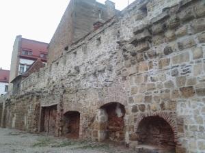 Ema; cetatea veche; Cluj-Napoca; fotografiile mele; personale; 18.02.2013; 1992-2002; publicat de Bot Eugen. 21.08.2014; 05:39. București; șoseaua Pantelimon 302.