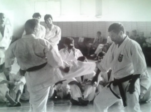 Shotokan: Karate do; Ghichin Funakoshi; fotografiile mele; Chișinău; 1990-1992; iulie 1993; publicat de Bot Eugen. București; șoseaua Pantelimon 302; sector 2; 31.08.2014; 19:06