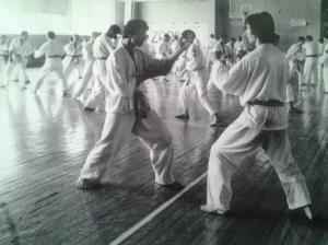 Karate do; Adrian Popescu Săcele; Chișinău; iulie 1993; personale; fotografiile mele; publicat de Bot Eugen. București; șoseaua Pantelimon 302; sector 2; 30.08.2014; 13:51