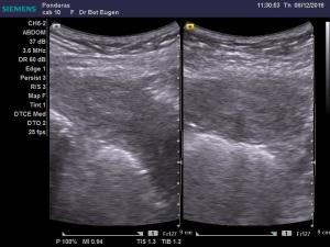 dr-bot-eugen_12-8-2016-11-28-34_12