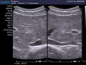 dr-bot-eugen_8-8-2016-12-40-38_231