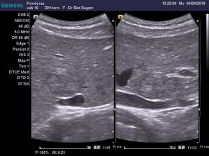 dr-bot-eugen_8-8-2016-12-40-38_280